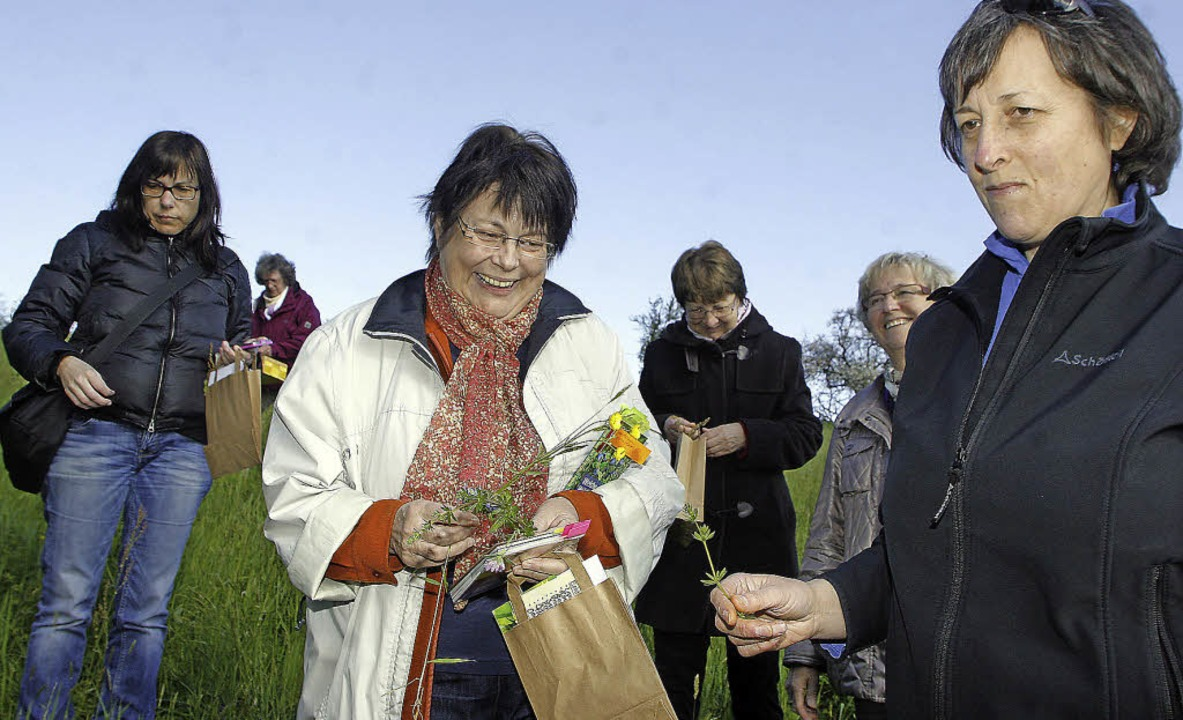 Kräuterwanderung mit Monika Fischer (Mitte) auf dem Langenhard     Foto: Heidi Fössel