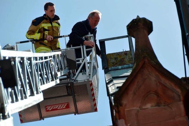 Heimatlose Rathaus-Störche kriegen Brutplatz auf Stadtkirche