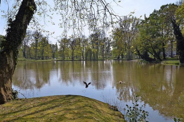 Ein prächtiger Park am Rande der Stadt