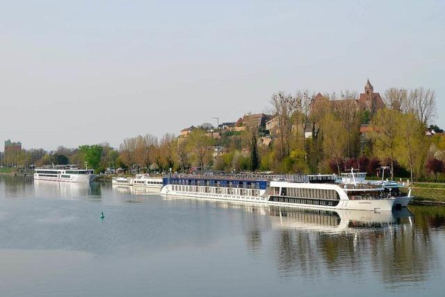 Auf dem Rhein boomen die Kreuzfahrten