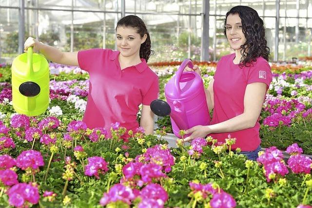 Blühendes für Balkon und Garten