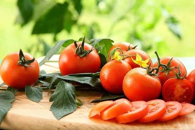 Knackiges Gemüse, süße Früchte und frische Kräuter