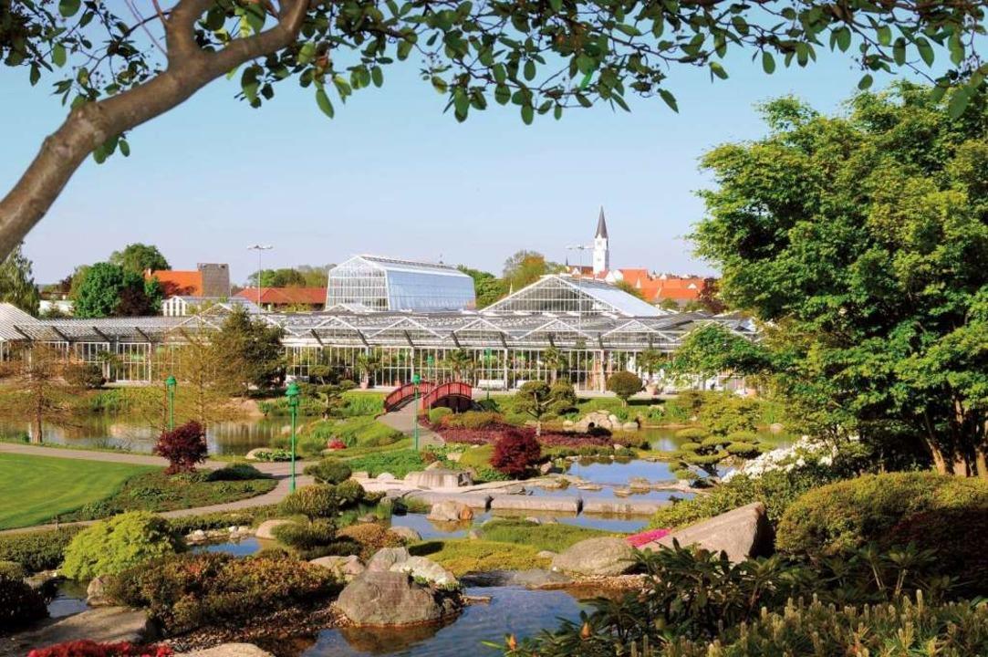 Der Blumenpark in Rain ist ein 115.000...staltungszentrum am Stammsitz in Rain.  | Foto: Dehner PRO