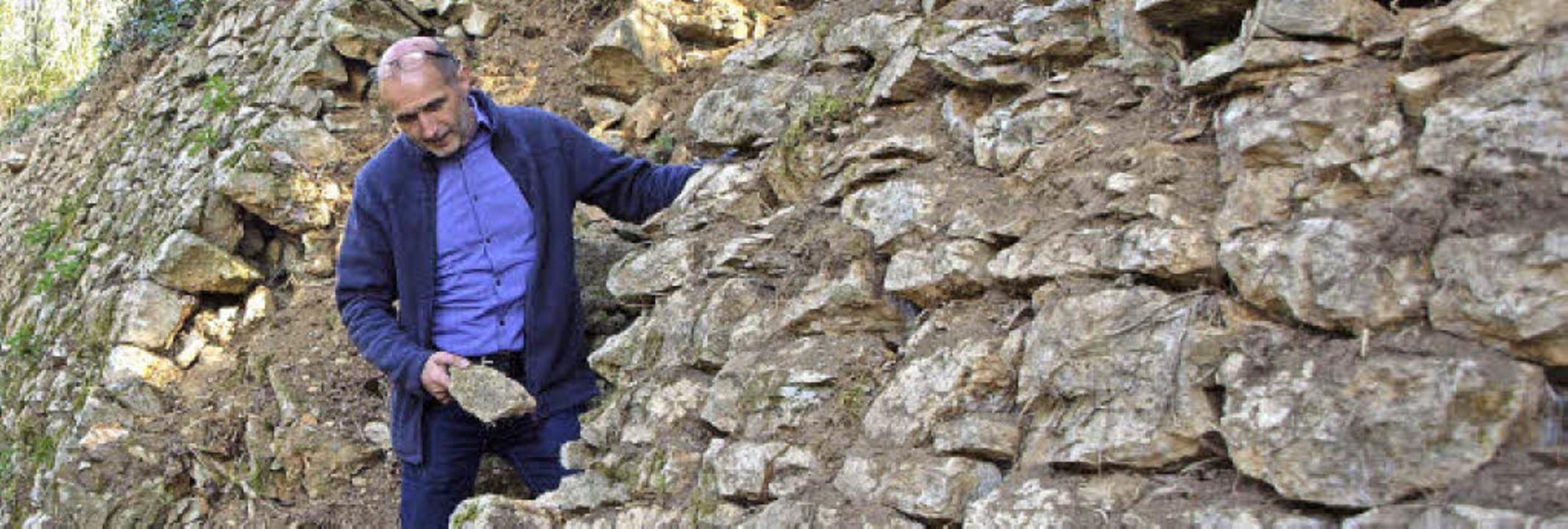 Baumamtschef Jürgen Rauer an einer Trockenmauer am Hüttenbühl über der Stadt.   | Foto: Michael Haberer