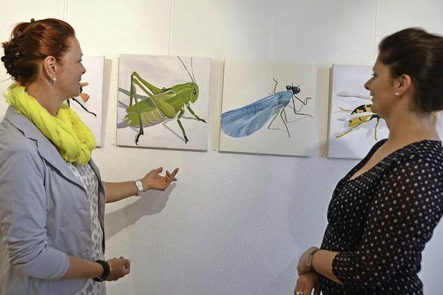 Insektenbilder und Porträts von Menschen