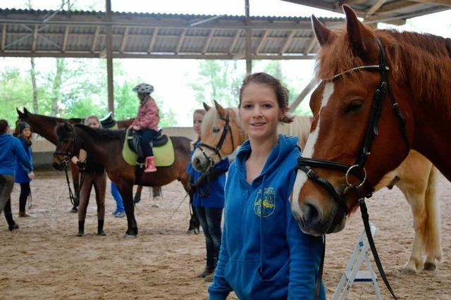 Buntes Programm zu Pferde