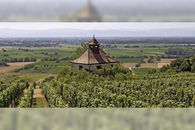 60 Jahre Badische Weinstraße: Monat der badischen Weine