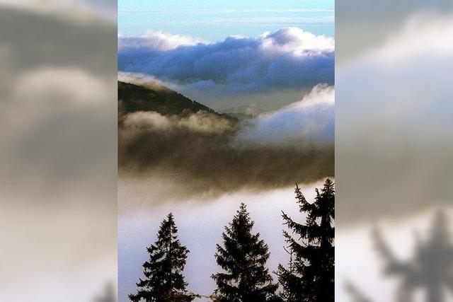 Nationalpark Schwarzwald eröffnet