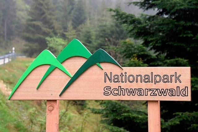 Prestigeprojekt ohne Nutzen: der Nationalpark Schwarzwald