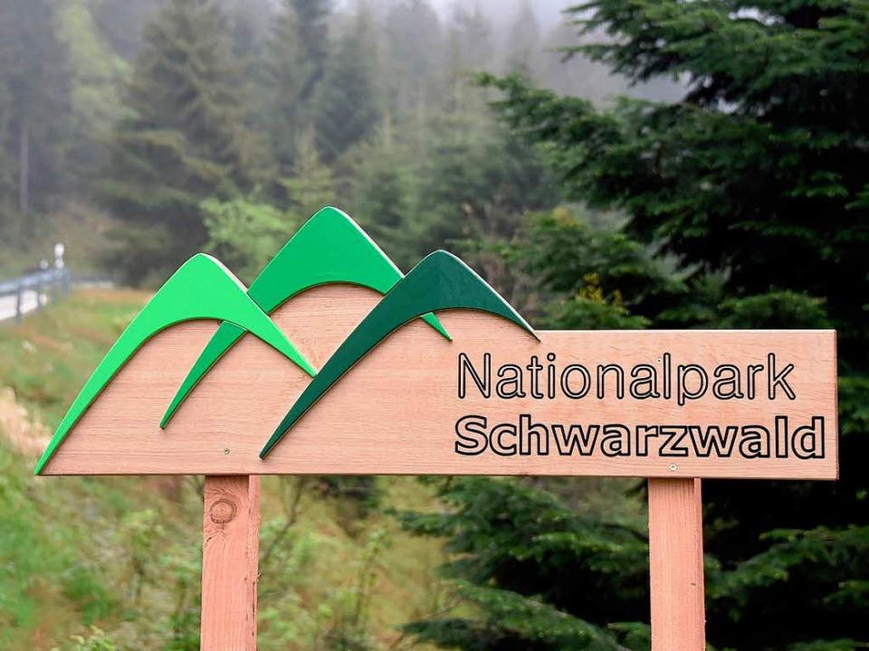 Der Nationalpark Schwarzwald soll künf... und 400.000 Besucher pro Jahr locken.  | Foto: dpa
