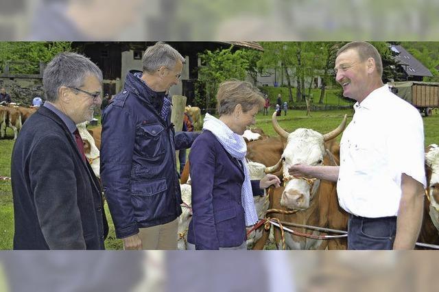 Das Rind als Geburtstagskind