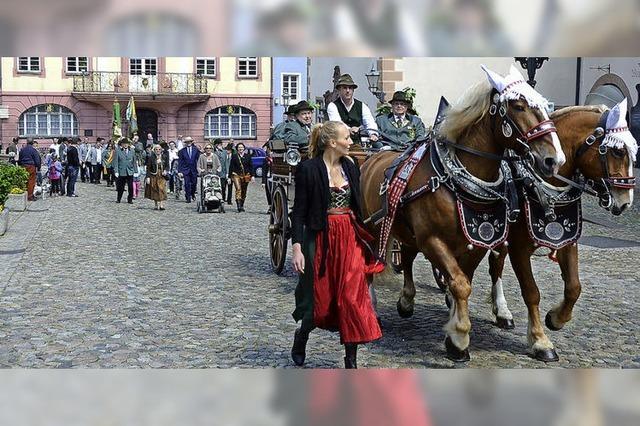 Traditioneller Schützenaufzug in Endingen