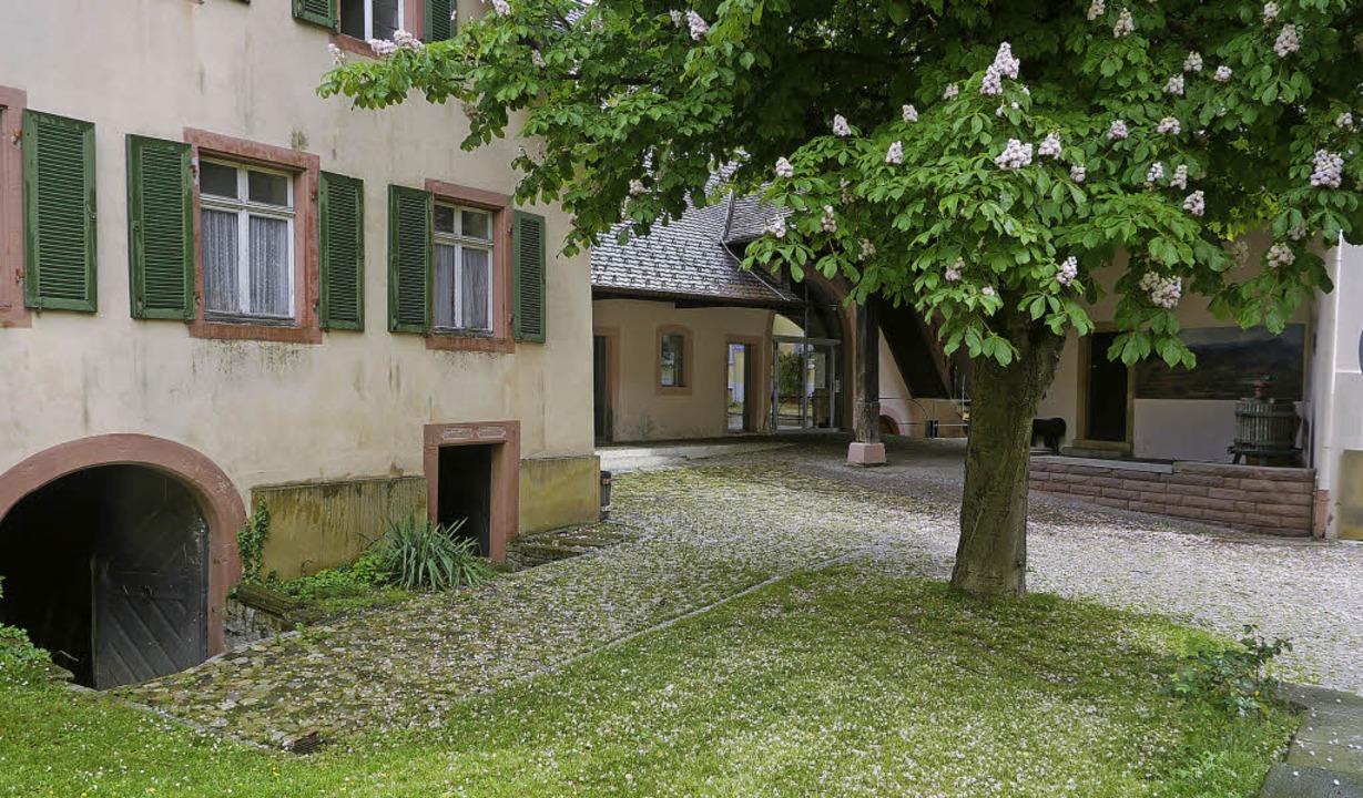 Der Dorfladen neben dem Dorfgemeinscha...ine kleine Gartenwirtschaft entstehen.  | Foto: Babeck-Reinsch