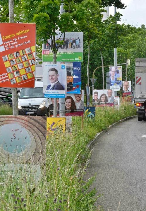 Kopf an Kopf stehen die Plakate an der Eschholzstraße.  | Foto: M. Bamberger