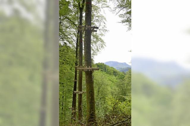 """Der Kletterwald Staufen kommt: """"Ein Traum, der wahr wird"""""""