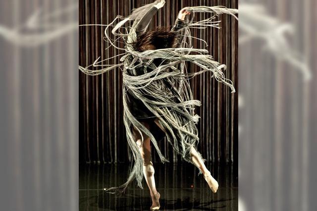 Mourad Merzoukis Compagnie Käfig beim Tanzfestival in Lörrach