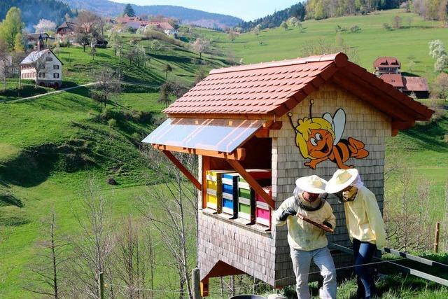 Bienen im Dienst der Wissenschaft