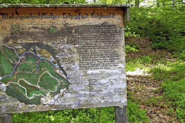 Köhlerrauch im Märchenwald