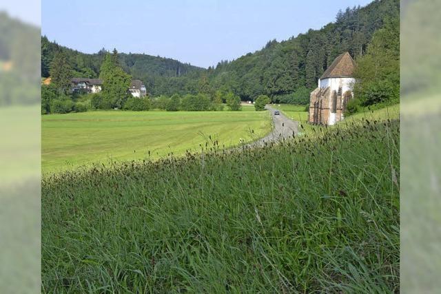 Vielleicht gehört das Tennenbacher Tal ja allen?