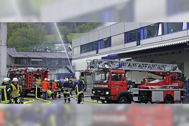 Feuerwehren proben Zusammenarbeit