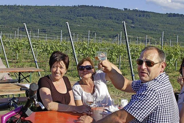 Von Wein zu Wein durchs Grüne