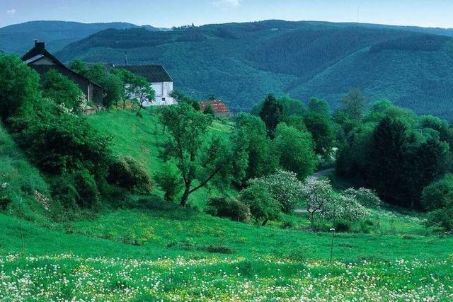 Die Luxemburger Ardennen