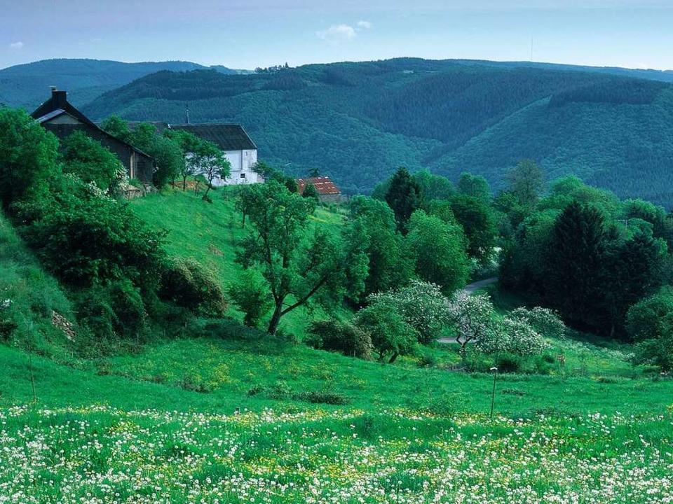 Gewundene Täler, dichte Waldflächen un...iche Gepräge der Luxemburger Ardennen.  | Foto: O.N.T. Luxemburg