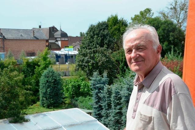 Das Fernsehen berichtet über Probleme beim Grunderwerb für die Landesgartenschau