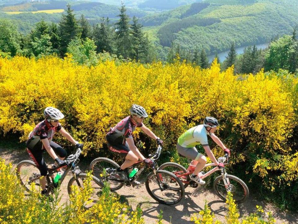 Luxemburg lockt Radsportbegeisterte mi...fast 600 Kilometer langen Radwegenetz.  | Foto: O.N.T. Luxemburg