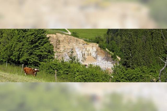 Gemeinderat stimmt Abbauplänen im Steinbruch zu