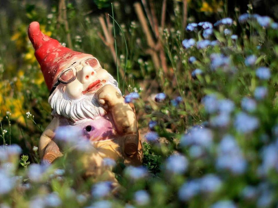 Gartenzwerge seien nicht typisch für Kleingärten, so der Verband   | Foto: dpa
