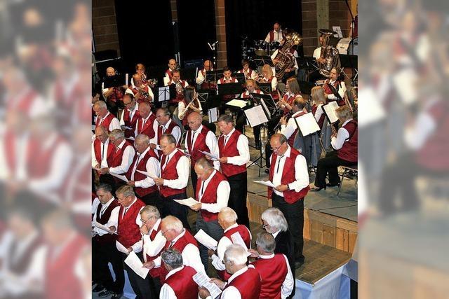 Sänger und Musiker in Harmonie vereint
