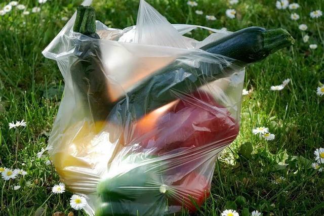 Plastik gefährdet die Umwelt