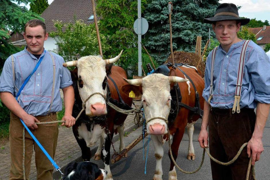 Rund 800 Teilnehmer waren beim großen Jubiläumsumzug der WG Wolfenweiler auf den Beinen. (Foto: Tanja Bury)