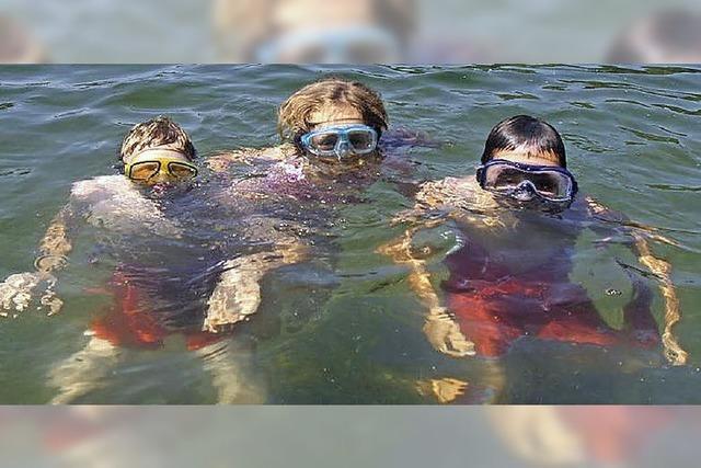Seen sind einwandfrei