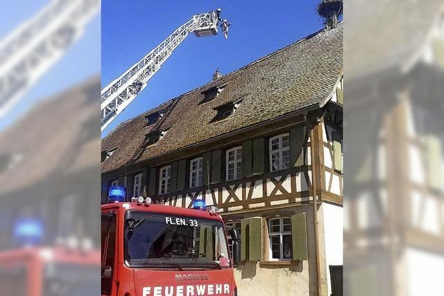 Feuerwehr rettet Storch