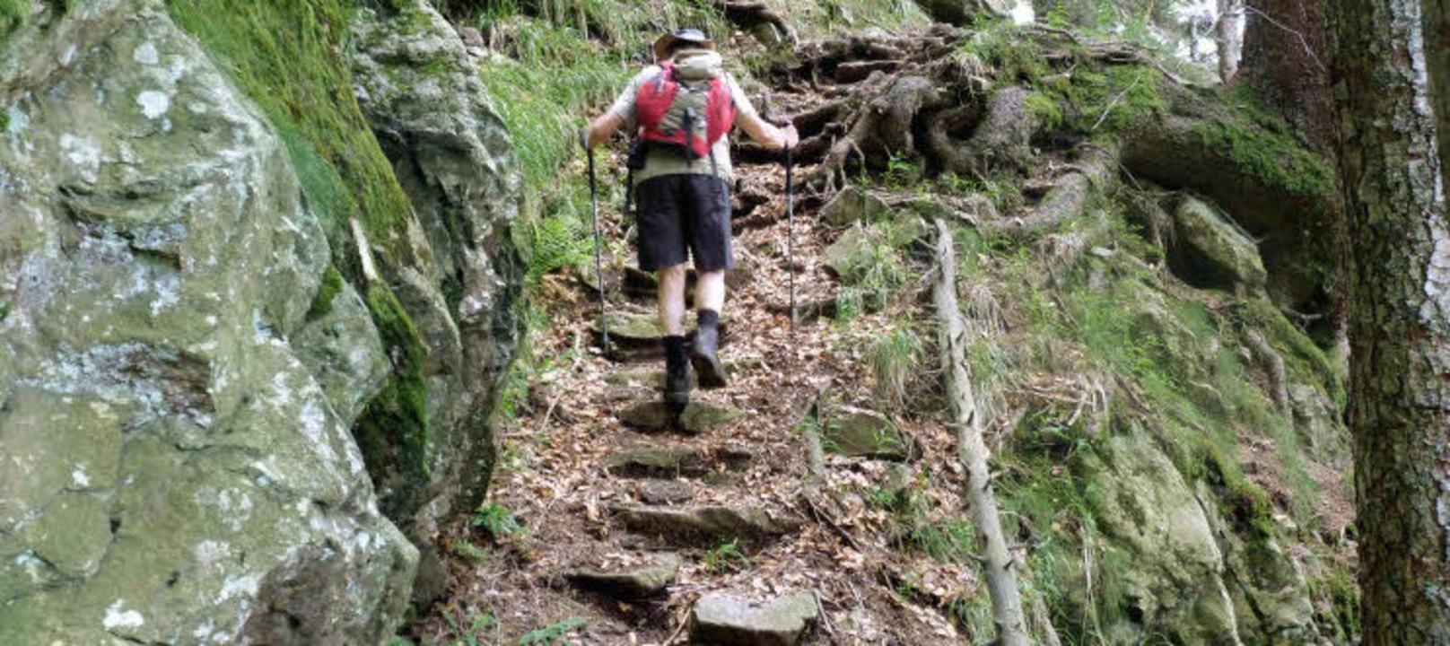 Auf den Resten einer künstlich angeleg...s auf dem Alpinen Pfad steil  bergauf.  | Foto: ROLF Müller