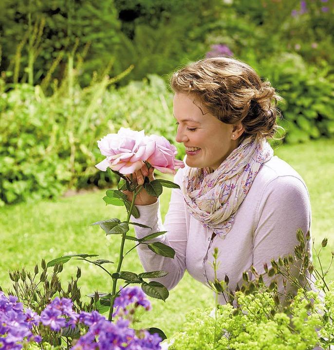 Rosen gehören zu den Klassikern im Zie...Pflege schenken sie dauerhaft Freude.     Foto: neudorff/txn
