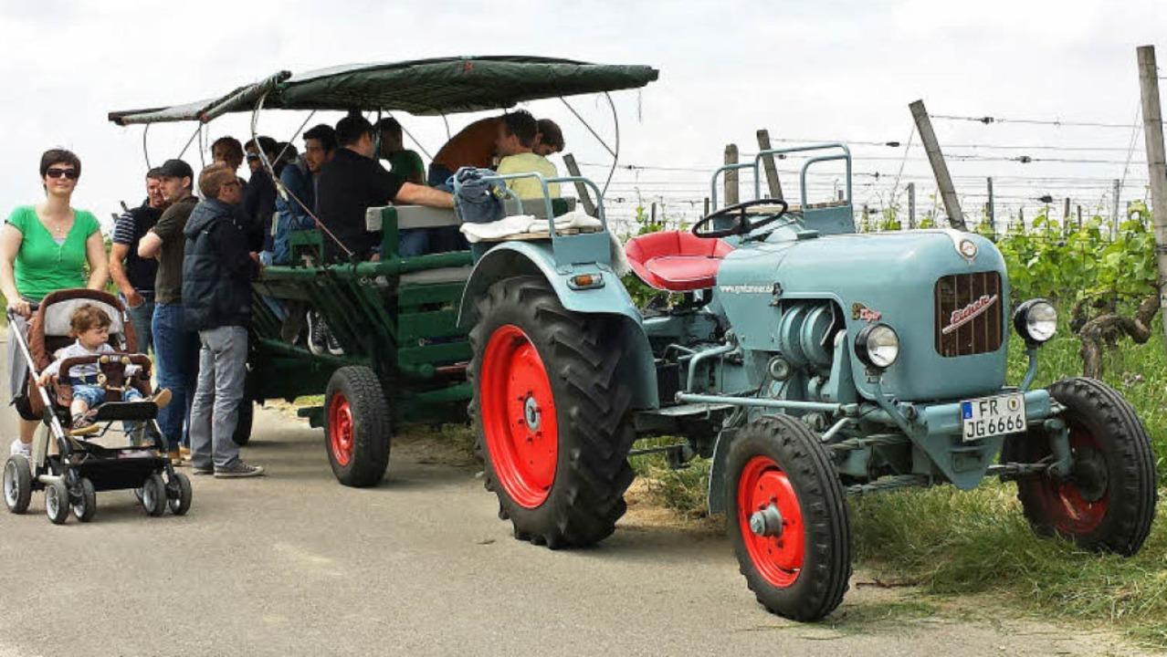 Egal ob zu Fuß oder mit dem Traktor: I...nd um Gottenheim  fast alles erlaubt.   | Foto: Julius Steckmeister