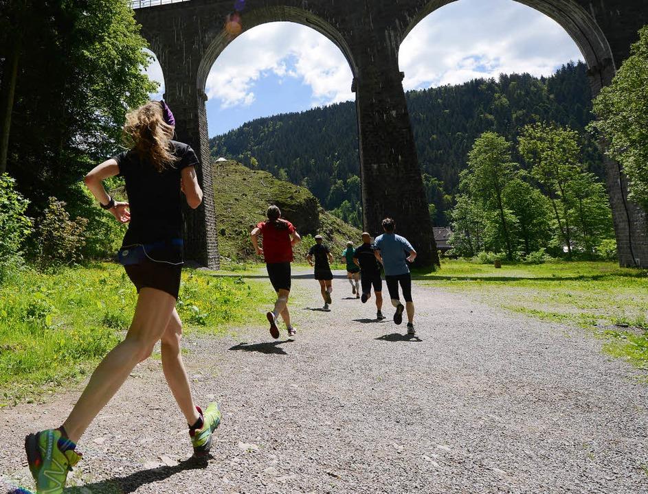 Durch die Ravennaschlucht: 280 Läufer ... Deutschlands härtestem Halbmarathon.   | Foto: seeger