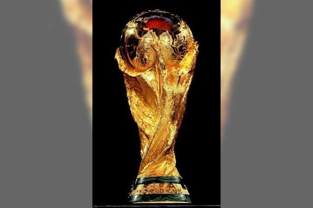 WM: Forscher analysieren Deutschlands Titel-Chancen