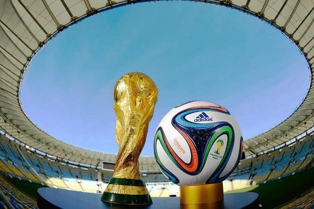 WM-Titel in Brasilien bringt 25,7 Millionen Euro