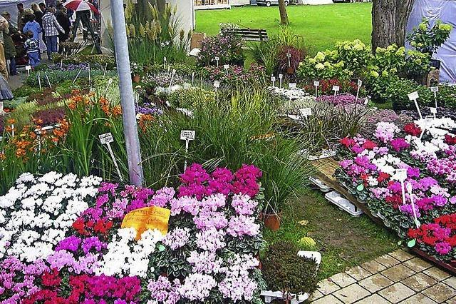 Gartenfestival im Kurpark