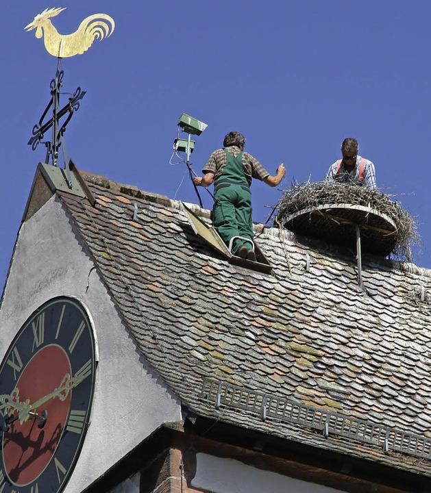 Der Horst hoch droben auf dem Kirchturm.   | Foto: Andreas Peikert