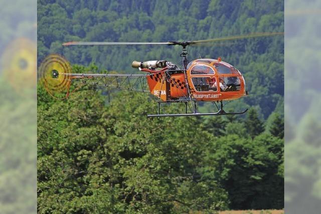 RC-Helikopter gehen in die Luft
