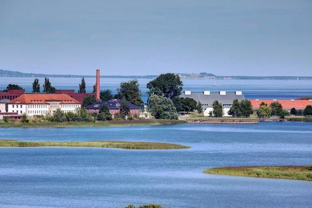 Auf einer Ostseeinsel erforschen Wissenschaftler gefährliche Viren