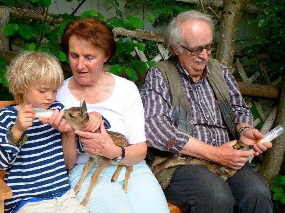 Alle drei Stunden füttern Günter und H...t Enkel Luis)  ihre zwei Schützlinge.   | Foto: Peter Stellmach
