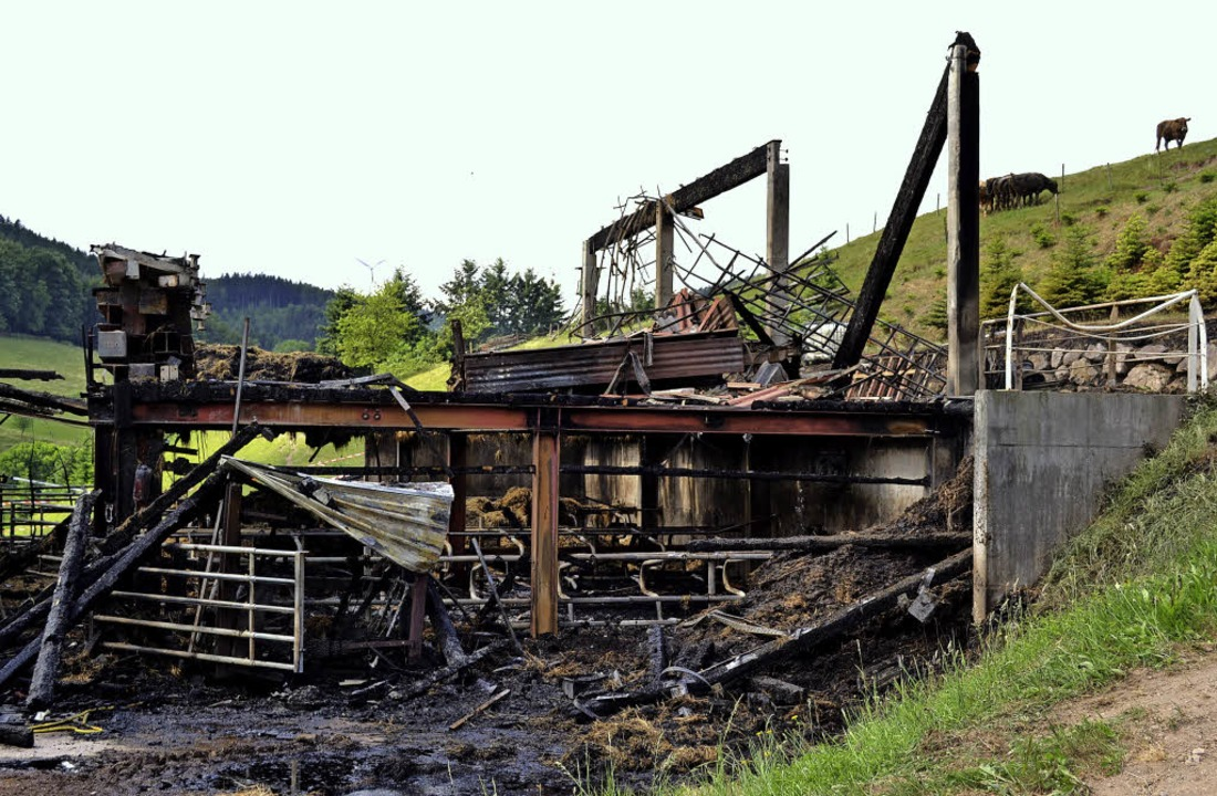 Brand Ökonomiegebäude  | Foto: Beate Zehnle-Lehmann
