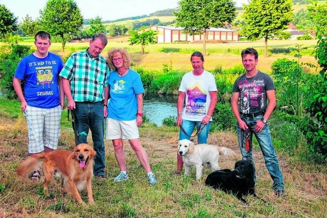 Biber attackiert schwimmende Hunde