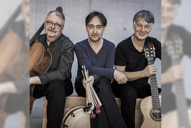 Das Trio Dierstein-Kleindienst-Zimmerlin tritt in Freiburg auf